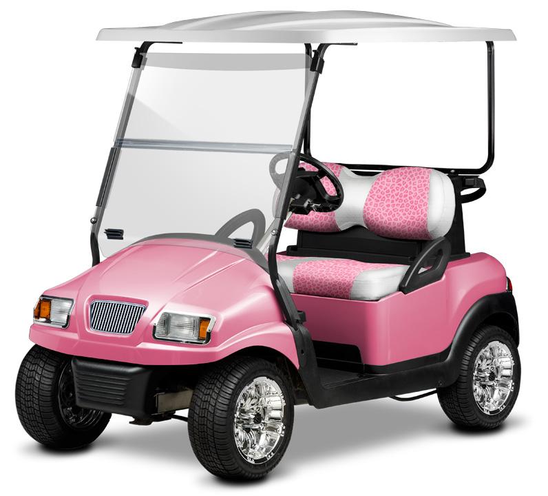 envy-leopard-pink